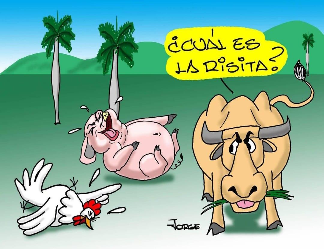 Tomado de CubaNoticias360